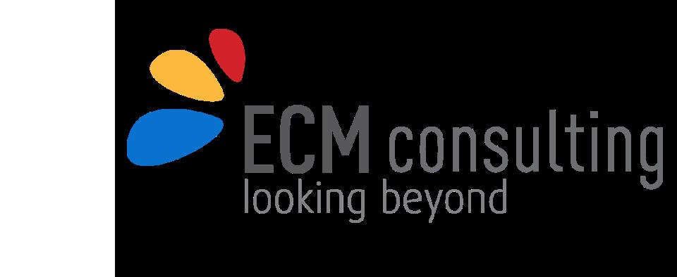 ECM Consulting